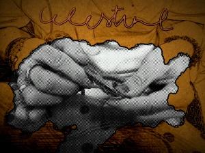 Celestine hand